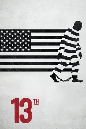 Watch 13th Full Movie