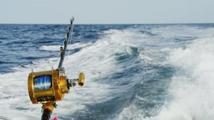Wicked Tuna: Outer Banks 2×10