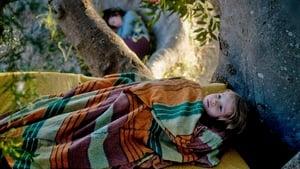 The Tree (2010) film online