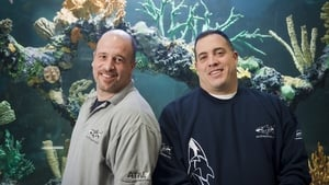 Tanked: 8×10