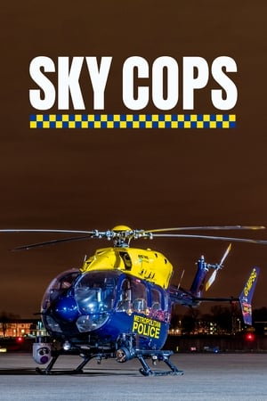 Image Sky Cops