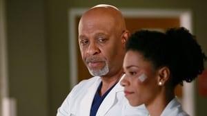 Grey's Anatomy: S11E16 1080p Dublado e Legendado