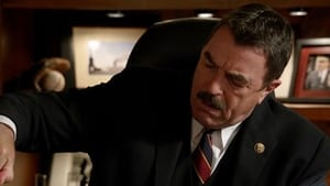 Blue Bloods: 3×7