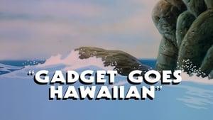 Gadget Goes Hawaiian