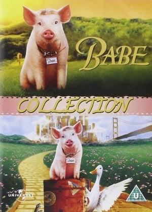 Assistir Babe - O Porquinho Atrapalhado Coleção Online Grátis HD Legendado e Dublado