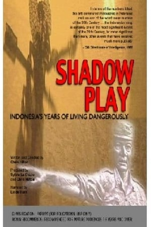 Shadow Play: Indonesia's Year of Living Dangerously