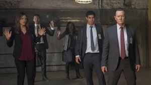 Serie HD Online Scorpion Temporada 2 Episodio 9 EE.UU. contra la ONU contra Reino Unido
