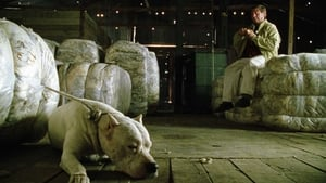 Bombon le chien (2004)