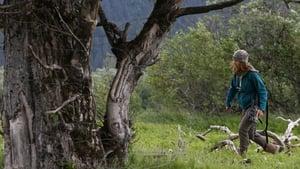 Dr. Oakley, Yukon Vet Season 3 Episode 4