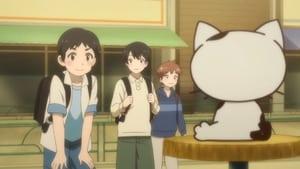 Uchitama?! Have You Seen My Tama?: Season 1 Episode 4