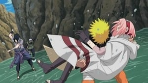 Naruto Shippūden Season 10 :Episode 215  Two Fates
