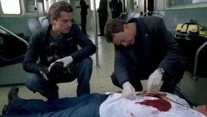 CSI: Kryminalne zagadki Nowego Jorku: 5×19