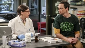 The Big Bang Theory: 10×8