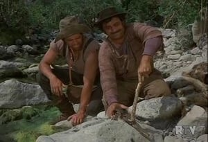 Daniel Boone: 6×20