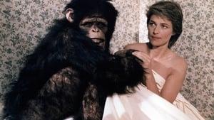 Max My Love (1986)