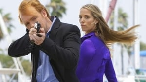 CSI: Miami - Temporada 7