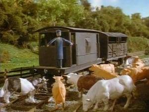 Thomas & Friends Season 2 :Episode 2  Cows