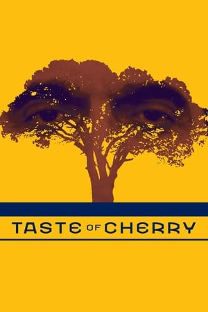 Taste of Cherry streaming