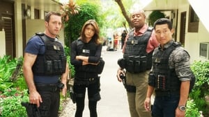 Hawaii Five-0: 5×8
