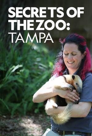 Secrets of the Zoo: Tampa – Season 2