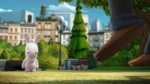 Rabbids Invasion: 1×62
