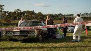 Brokenwood Saison 3 episode 3
