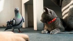 Cats & Dogs: The Revenge of Kitty Galore (2010) สงครามพยัคฆ์ร้ายขนปุย 2 : คิตตี้ กาลอร์ ล้างแค้น