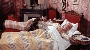 The Cat (1971)
