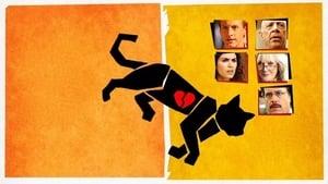 El asesinato de un gato (Murder of a Cat) (2014) online