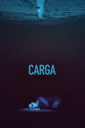 Baixar A Carga (2019) Dublado via Torrent