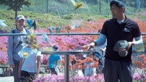 مشاهدة فيلم 2019 Garden, Zoological أون لاين مترجم