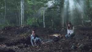 The Path Sezon 2 odcinek 2 Online S02E02