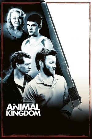 Animal Kingdom (2010) is one of the best movies like We're The Millers (2013)