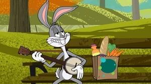 New Looney Tunes Season 1 Episode 11