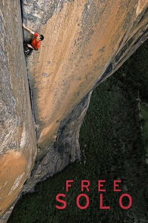 poster Free Solo