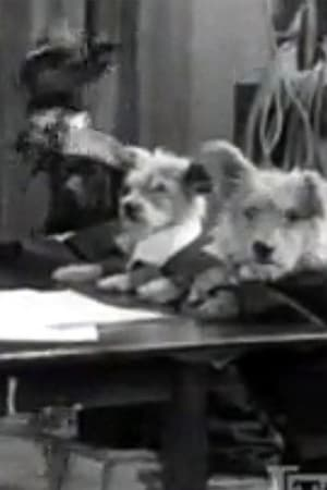 The Two Barks Brothers (1931)