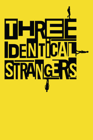 Watch Three Identical Strangers online