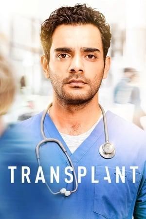 Image Transplant