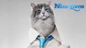 แมวเก้าชีวิต เพี้ยนสุดโลก (Nine Lives)