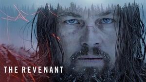 The Revenant – Der Rückkehrer [2015]