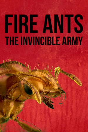 Fire Ants 3D: The Invincible Army