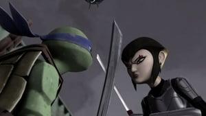 Teenage Mutant Ninja Turtles Season 1 Episode 20
