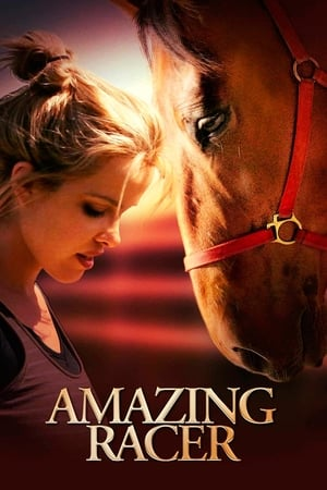 Amazing Racer (2009)
