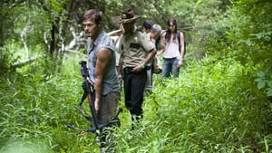 The Walking Dead 2×2
