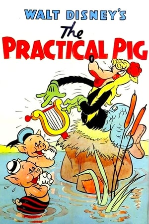 The Practical Pig streaming