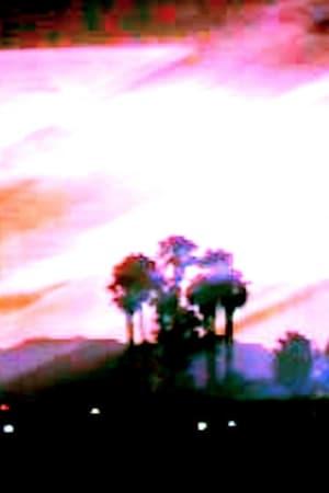 Florida Ghost