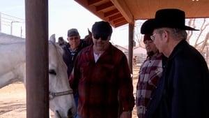 Pawn Stars Season 9 :Episode 32  Saddle Up