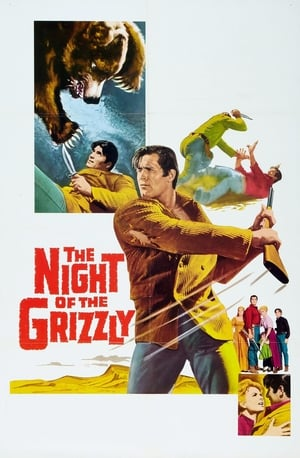 Play The Night of the Grizzly