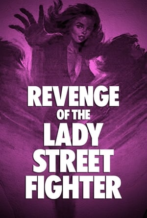 Revenge of Lady Street Fighter