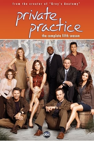 Watch Private Practice Season 4 Episode 7: Did You Hear ...